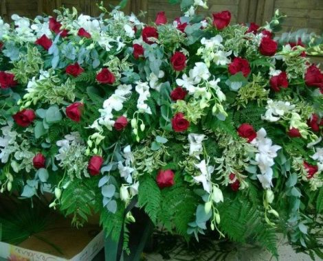cofano rose edendrobio